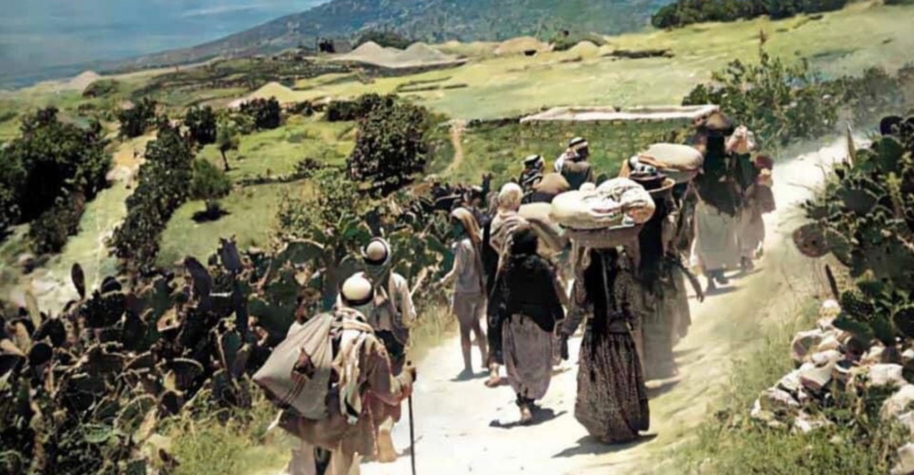A group of 14 people walking on a dirt path along a hillside that is lined with cactus and rows of shrubs.  People are wearing long, flowing outfits with scarves covering their heads.  Some are balancing large trays on heads with items stacked on top.  Others have walking sticks.  Can not see any faces.