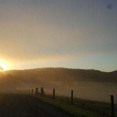 Sunrise on farm