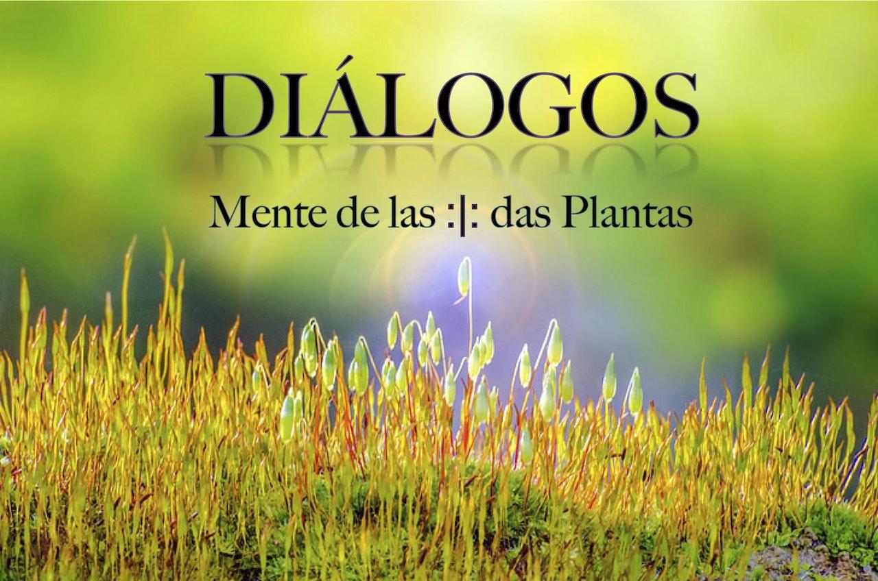Dialogos banner