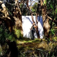 Vicki_Hallett_trees